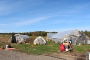NASAP's farm in Lisbon, Maine.